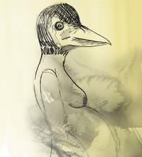 Théâtre: «(dé) cousu (es) ou Il était une fois une petite fille qui avait peur des oiseaux»