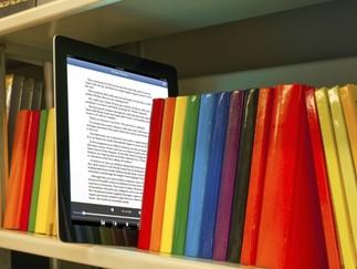 Initiation à l'emprunt de livres numériques avec la bibliothécaire: Atelier pour adultes