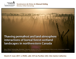 Thawing permafrost and land-atmosphere interactions of boreal forest-wetland landscapes in northwestern Canada