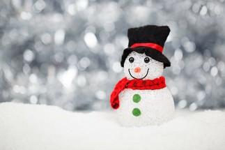 L'Atelier des lutins : Bonhomme de neige avec Nous les arts