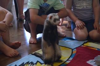 Pour l'amour des animaux avec Éducazoo