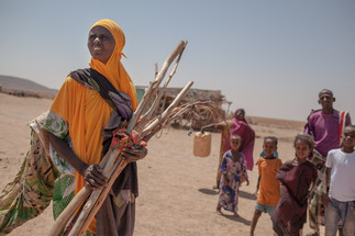 Exposition : « La sécheresse nous a rendus égaux » d'Adrienne Surprenant