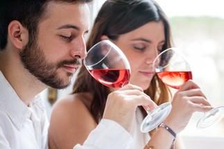 Le cours de base sur le vin le moins cher sur le marché!