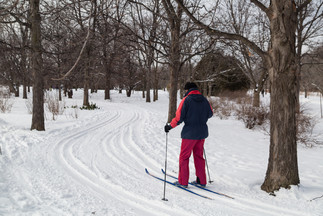 Ski de fond au Jardin botanique de Montréal