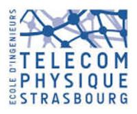Intéressés à partir en échange? Présentation de Télécom Physique Strasbourg (France)