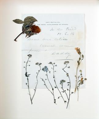 Fleurs D'ARMES : exposition multi-sensorielle itinérante