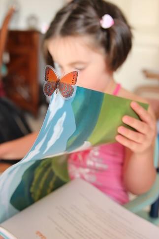 HEURE DU CONTE: La petite académie des contes de Fatima