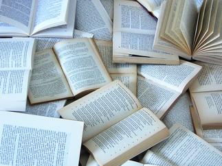 Domino de livres