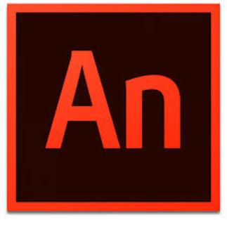 Apprendre Adobe : Introduction à l'animation avec Animate (14 ans et +)