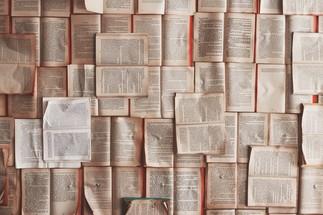 Et si on parlait de livres? (Adultes)