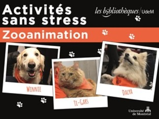 Activités sans stress : Zooanimation à la Bibliothèque de la santé