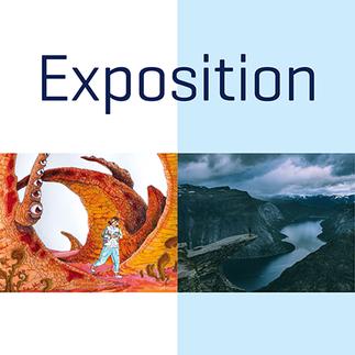 Exposition des concours interuniversitaires de BD et photo