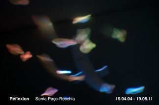 Vernissage TOPO • Sonia Paço-Rocchia – Réflexion • 4 avril, 17h30 à 19h30