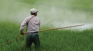 Des pesticides dans nos assiettes? Quels dangers et quelles solutions?
