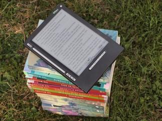 La bibliothèque numérique : les journaux et revues