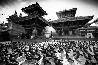 Népal en cinq temps