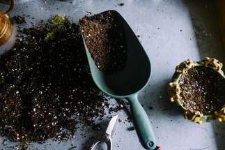 Événement échange de semences et conseils sur la fermeture du jardin pour l'hiver avec l'Écoquartier