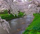 Au cœur du Japon