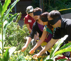 Courtyard of the Senses: guided activities
