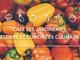 Curiosités culinaires au Café des Jardineries !