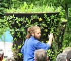 Rendez-vous horticole – Conférence de Guillaume Pelland