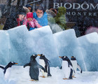 Biodôme: 25 years in pictures