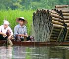 China, Natural Harmony