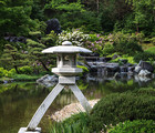 The art of Japanese gardens