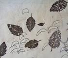 Enchanting Botanical Prints