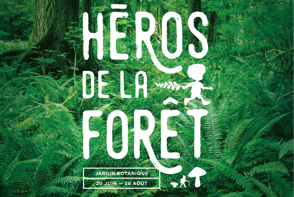 Heroes of the Forest