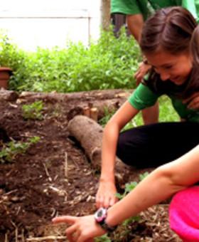 Camp de jour en agriculture urbaine