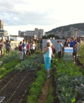 École d'été sur l'agriculture urbaine 2016