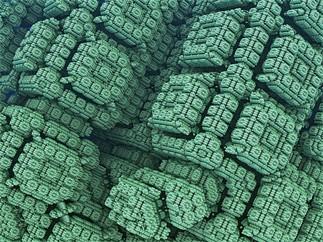 Midi-conférence du Département d'informatique: «Informatique théorique: construire des arbres dans le monde de Minecraft»