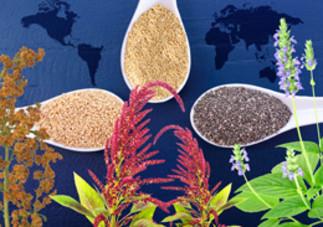 Conférence: «Quinoa, chia et amarante - Des graines miraculeuses?» au Coeur des sciences