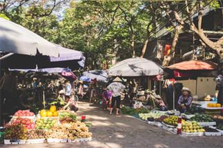 Conférence: «The Sidewalk Diet: marchés de rue et accès aux aliments frais dans les quartiers centraux de Hanoi, Vietnam»