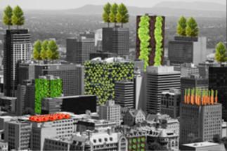 Balade: «Sur les toits verts»