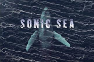 Projection et conférence: «Sonic Sea»