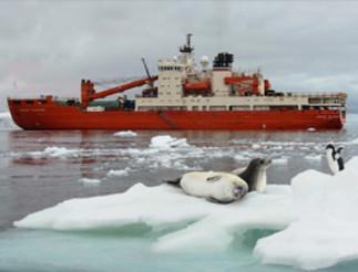 Conférence: «Antarctique: une oasis de vie?» au Cœur des sciences