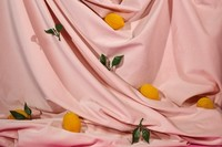 Exposition: «Michelle Bui. Pool of Plenty» à la Galerie de l'UQAM