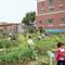 Formation: «Jardins pédagogiques et éducatifs: comment arrimer l'éducation et l'agriculture urbaine»