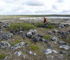 Tea in the Tundra with Lisa Qiluqqi Koperqualuk